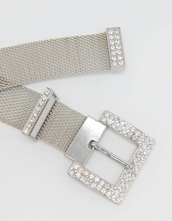 Shiny Metallic Belt