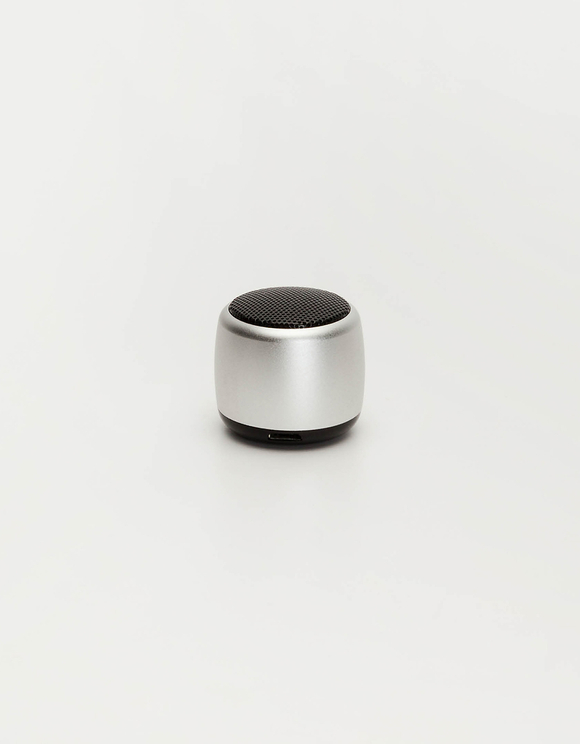 Wireless Silver Mini Speaker