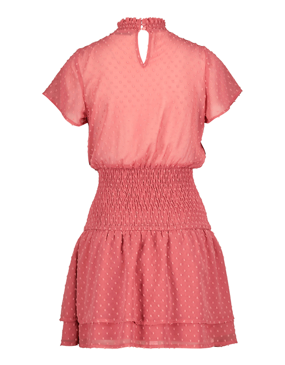 Pink Dress with Dotted Mesh