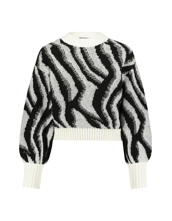 Sweter z motywem zebry