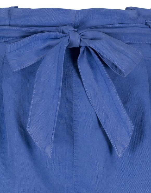 Blue Dressy Shorts