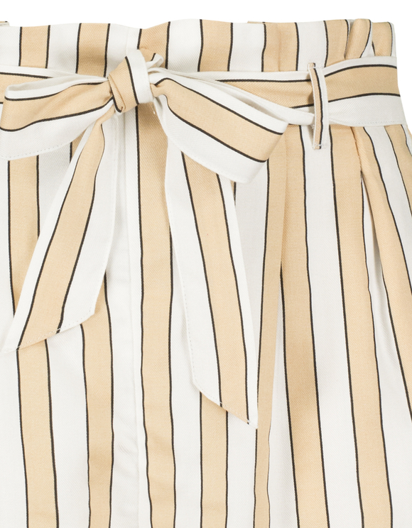 Paperbag Stripe Shorts