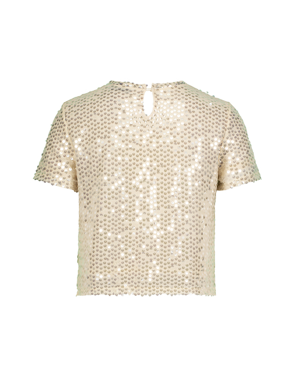 Light Pink Sequins Top