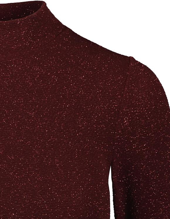 Burgundy Glittery Top