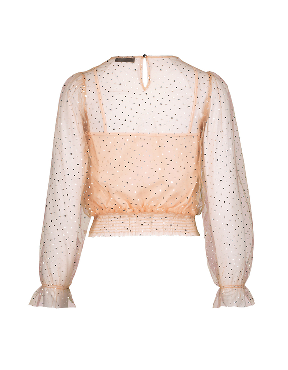 Pink Transparent Blouse