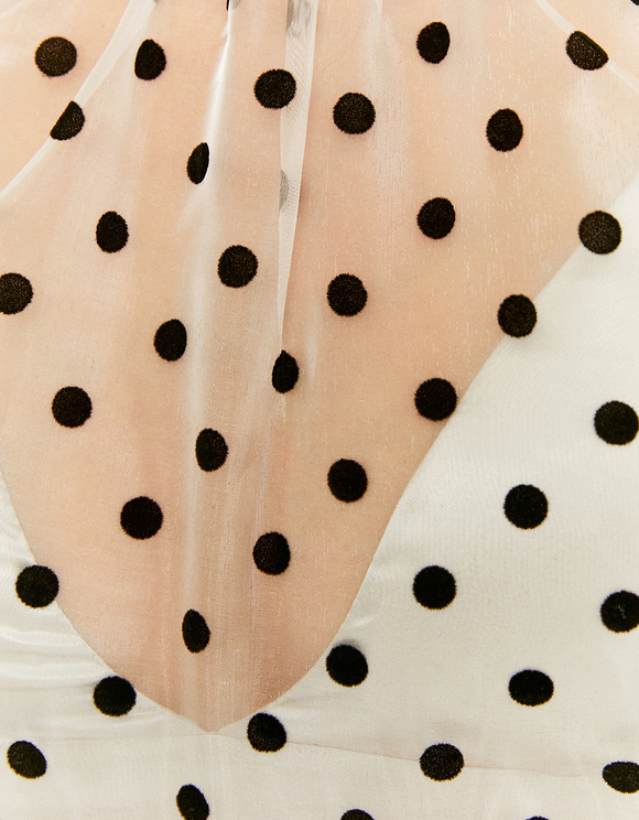 Polka Dots Transparent Blouse