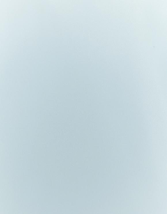 Blue Ruffle Blouse