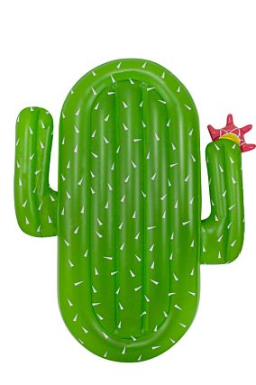 Cactus Pool Float
